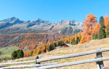 Blick vom Kofler-Biohof auf die 3000er von Rein im Herbst