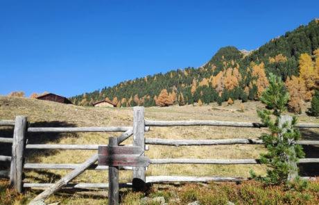 Wandern zur Kofler Alm